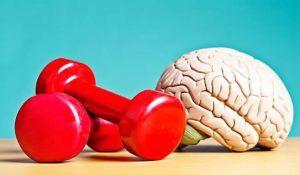 Herramientas para mejorar la memoria